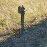 Marche à l'ombre