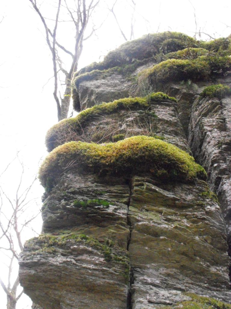 La ronde roche 2