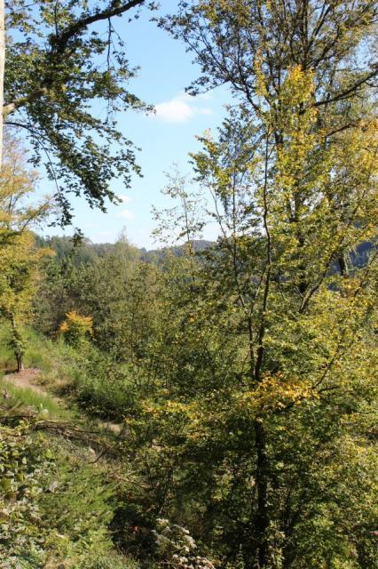 paysage alentour de bouillon.jpg 2