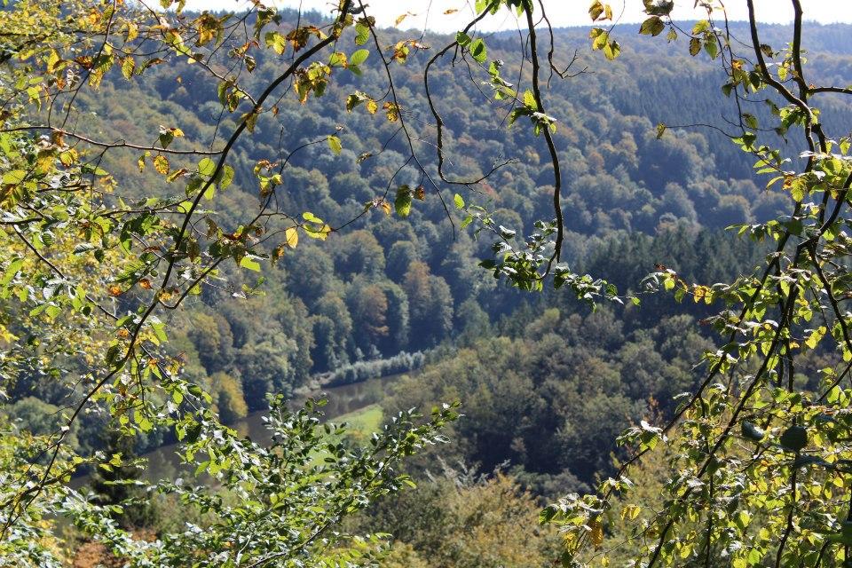 paysage alentour de bouillon.jpg 3