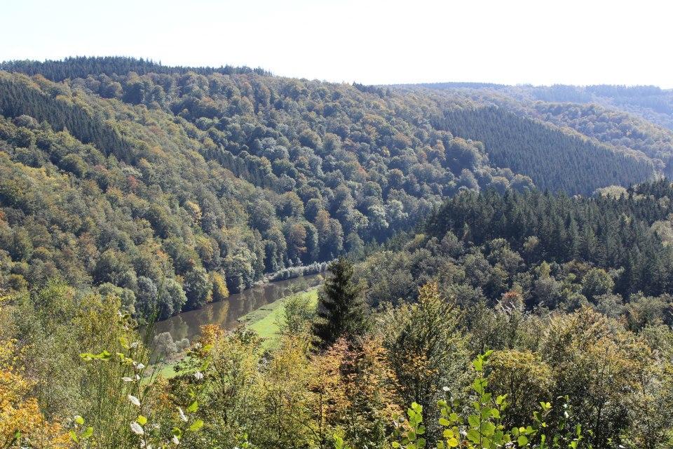 paysage alentour de bouillon.jpg 4