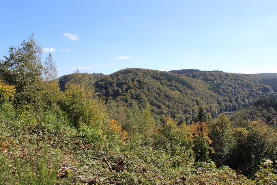 paysage alentour de bouillon.jpg 5