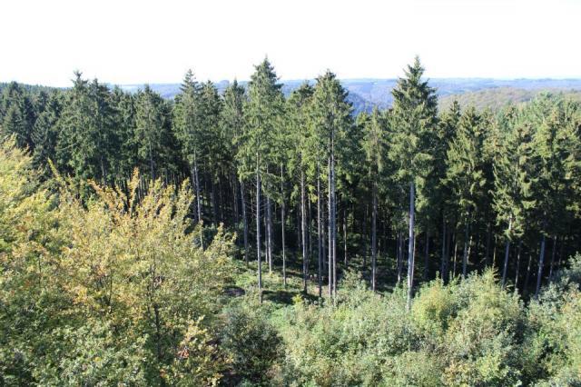 paysage alentour de bouillon.jpg 7