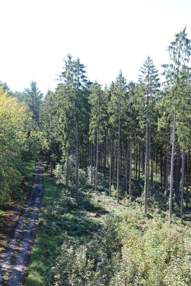 paysage alentour de bouillon.jpg 8